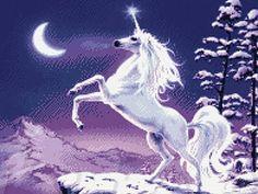 Unicorn - Stretched Canvas