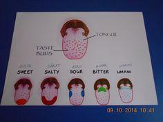 Corpul uman- idei de activități – Jurnal de prichindei Sweet And Salty, Human Body, Kindergarten, Reggio, School, Kindergartens, Preschool, Preschools, Pre K