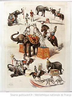 Animaux dressés, 1892