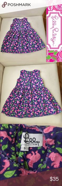 """Lilly Pulitzer """"Squirrels"""" Corduroy Dress Lilly PulitzerLittle Girls """"Squirrels"""" Print Corduroy Dress. Great condition, preowned. Size 5. Cute Lilly dress for your little girl!! Lilly Pulitzer Dresses"""