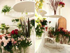 nadamoto Yukiko arquitectos: florería vida verde