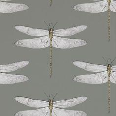 Graphite / Almond - 111242 - Demoiselle - Palmetto - Harlequin Wallpaper