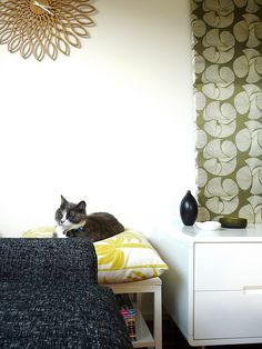 Cute cat with Florence Broadhurst cushion and timber clock: from Julie at Olive and Joy