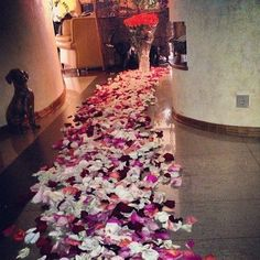 If I came home to this I'd die