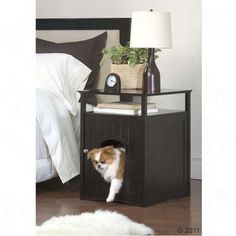 Big Pet Room - Sypialnia lub kuweta dla kota i małego psa