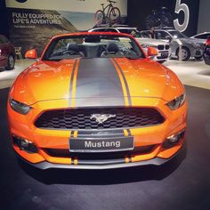 One of my personal favourites at the Singapore Motorshow 2017  the Ford Mustang Convertible  dang its hot!  #sgcarshoots #sgexotics #speed#sgcaraddicts #singapore #sgcars #sportscars #revvmotoring #nurburgring #instacar #carinstagram #hypercars #monsterenergy #excitement #epic #visit_singapore #carswithoutlimits #fastcars #drifting #motorsports #love #gopro #monsterenergysg #instagrammers #supercarlifestyle #speedy #fordmustang #ford