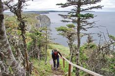 The beautiful km Skerwink Trail located near Trinity, Newfoundland is one of the best in the province for rugged coastal scenery including sea stacks. Newfoundland And Labrador, The Province, Canada Travel, Nova Scotia, Cool Places To Visit, Natural Beauty, Coastal, Trail, Scenery