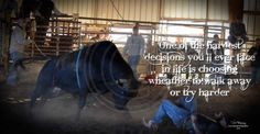 #quotes #bullriding #photography