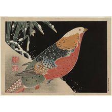 伊藤若冲: Golden Pheasant - ボストン美術館