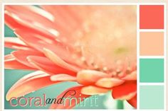 coral and mint - Really like this one
