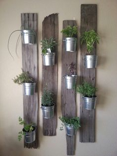 Herbs on the wall. So simple and cool!
