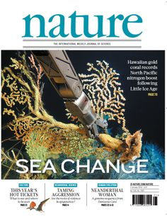 Nature, Volume 505 Number 7481. The Hawaiian gold coral Kulamanamana haumeaae. Owen Sherwood and colleagues use nitrogen isotopic (δ15N) records from K. haumeaae corals to establish that the increase in nitrogen fixation had already began around 150 years ago, and that it may have been linked to Northern Hemisphere climate change since the end of the Little Ice Age. Cover image: NOAA Hawaii Undersea Research Laboratory, DSRV Pisces Pilot Max Cremer, 2004
