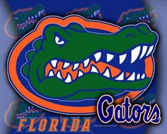 Florida Gator Desktop Wallpaper | Florida Gators - team, football, gators, florida