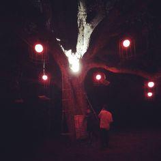 #whoyouare? #pepilot #aliceinwonderland #installation
