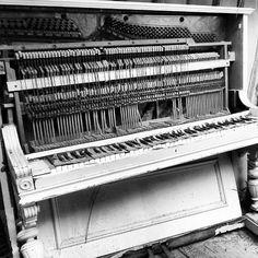 Nunca aprendió a tocar el piano.  Ese instrumento no era para un gigante con manos de 3 kilogramos. #instacuento