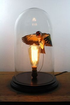 Handmade paper and wood Goldfinch bell jar light by ZackMclaughlin on Etsy Fit And Fix, Wood Bird, Paper Birds, Bird Sculpture, Paper Sculptures, The Bell Jar, Goldfinch, Jar Lights, Glass Domes