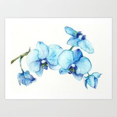 Blue Orchids - Watercolor Art Print by Goosi - $15.00
