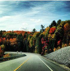Muskoka fall colors