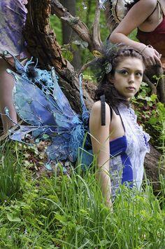 Fairie wings.