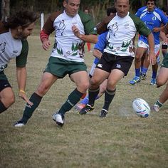 Primer encuentro de Rugby Nocturno de veteranos, Mar del Plata 2015 Rugby, Hockey, Club, Running, Sports, Mar Del Plata, Roosters, Nocturne, Hs Sports