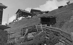 Paasrhof im Tiroler Oberland, um 1950