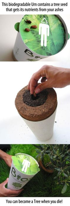 This biodegradable URN contains a tree seed that gets its nutrients from your ashes. You can become a tree when you die!