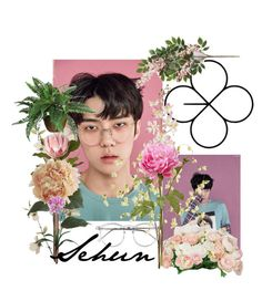 """""""Sehun lucky one"""" by minhanh-tran on Polyvore featuring beauty, Wildfox, Pier 1 Imports, CB2, Laura Cole, Nearly Natural and kpop"""