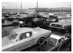 Mustangs on Loaders Ford Factory 1966 Ford Mustang, Mustang Cars, Car Ford, Ford Mustangs, Retro Cars, Vintage Cars, Vintage Photos, Classic Motors, Classic Cars