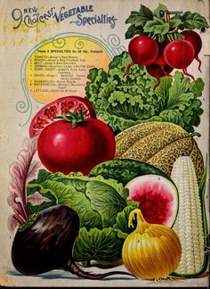 Flowers, fruits and vegetables in an antique advertising - for decoupage part Discussion on LiveInternet - Russian Service Online Diaries Vintage Diy, Vintage Labels, Vintage Images, Vintage Signs, Plant Catalogs, Seed Catalogs, Garden Catalogs, Vintage Poster, Vintage Prints
