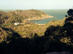 Arthur Bay lookout. Auf der suche nach Koalas. Magnetic Island / Australia