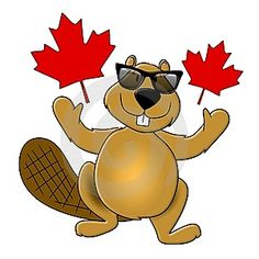 Illustration about An illustration featuring the popular beaver wearing sunglasses and surrounded by Canada Day maple leaves. Illustration of clip, canada, cool - 5306483 Canada Day Images, Canada Pictures, Canadian Things, Canadian Girls, Popular Cartoons, Free Cartoons, Canada Leaf, Canada 150, Smileys