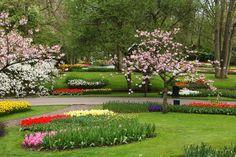 lovely city park garden