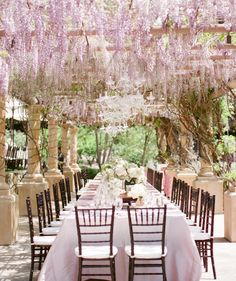 canopy wisteria over wedding table.