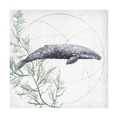 Love of the Sea III Art Print by Grace Popp at Art.com
