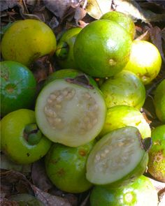 Cas, The Cas fruit is actually on one many types of guavas found throughout the world, tastes great and packs a punch with many nutrients and health benefits.  Cas is also normally found for sale year round in the supermarkets across the country in Costa Rica.