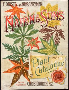 A Christchurch nursery, 1904 by National Library NZ Nairn Sons Ltd, Plant catalogue [cover], Lithograph.
