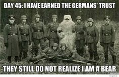 they still don't know i'm a bear