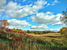 Country Landscape Blue Cloudy Sky Autumn Decor Rustic Fall