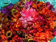 Surreal Submerged Bouquet Photography by Gilles Bensimon