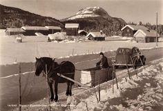 Hesteskyss ved Sigdal - Eggedalsruten  Postkort:Normann, slutten av 1940-tallet