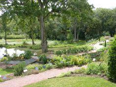 jardin à fleurs et plantes médicinales
