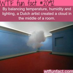 I have always wanted to touch a cloud...
