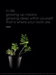 Mindful and Inspirational Quote By Osho Osho Quotes On Life, Spirit Quotes, Me Quotes, Mahatma Gandhi, Tantra, William Shakespeare, Osho Love, Osho Meditation, Divine Light