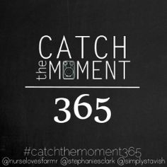 Catch the Moment 365 | Week Six « Photography « Marvelous Mommy
