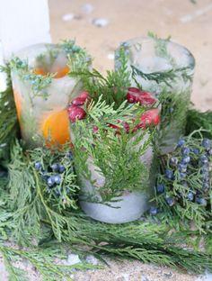 botanical ice lanterns   gardenista