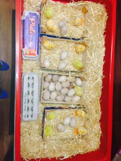 This was created by a colleague, Casie, at Orchard Ridge Nursery School. This ties in perfectly with a farm unit and it can be used to teach math concepts, such as a dozen or one to one correspondence.