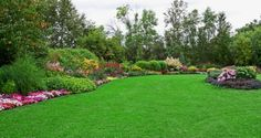 Green Lawn in Landscaped Formal Garden stock photo Landscaping Supplies, Landscaping Company, Landscaping Melbourne, Acreage Landscaping, Backyard Landscaping, Landscaping Ideas, Lawn Care Tips, Green Lawn, Green Grass