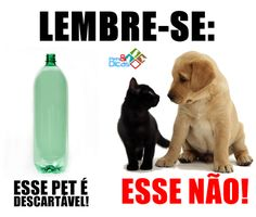 Fotos de animais com mensagens para Facebook Guinea Pig Toys, Cat Toys, Cut Animals, Animals And Pets, Love Pet, I Love Dogs, Dog Nose, Fish Cat Toy, Little Bit