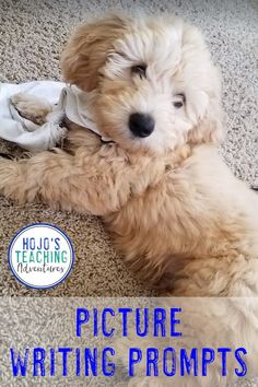 Learn how to use picture writing prompts to keep elementary students engaged, writing, and having fun with the great ideas and suggestions here. Picture Writing Prompts, 3rd Grade Classroom, Home Learning, Year 2, Upper Elementary, Literacy Centers, Special Education, Middle School, Teaching