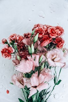 I love that the soft pink of the lisianthus is also present in the sweet little carnations.
